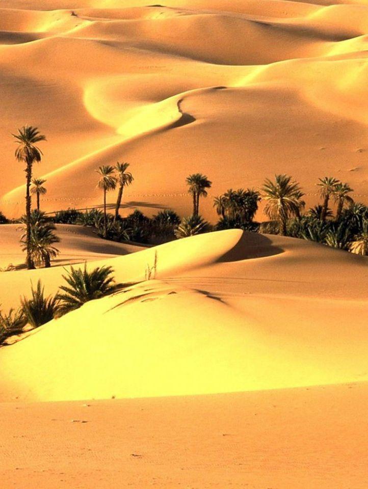 Thar Desert Of Sindh Beautiful Landscapes Landscape Nature
