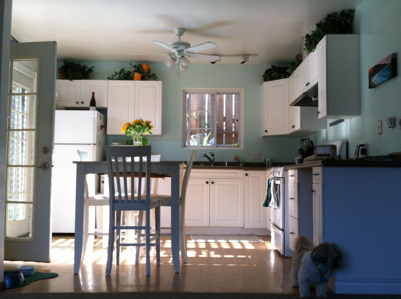 Beach House Paint In My Kitchen Sherwin Williams