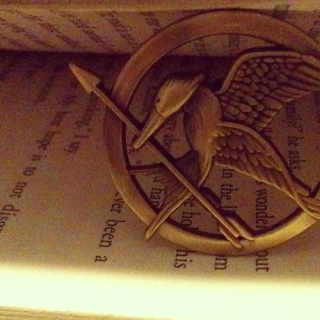 Items similar to Hunger Games May The Odds Be Ever In