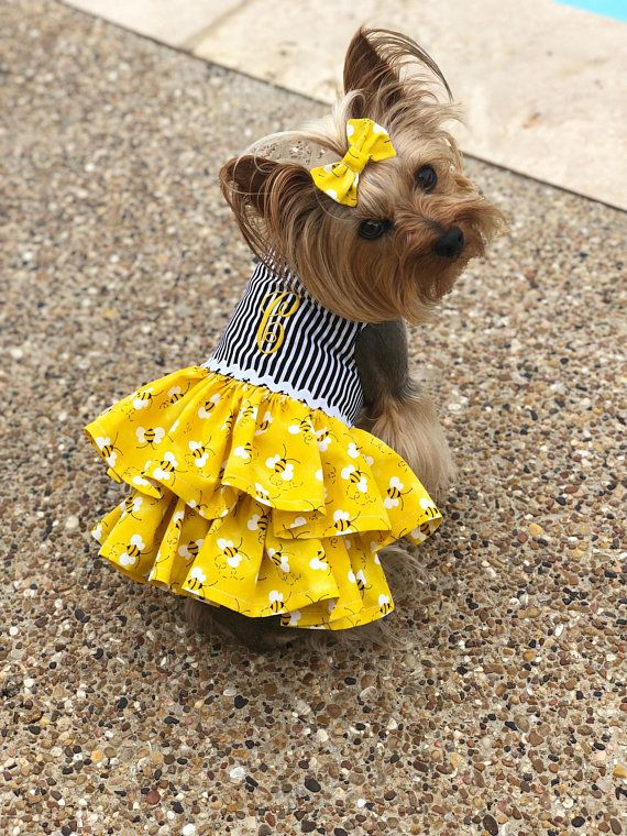 a9714d084bb2 Buzzy Bee Dog Dress, Customizable to your pets measurements!! Size XXS XS  and Small