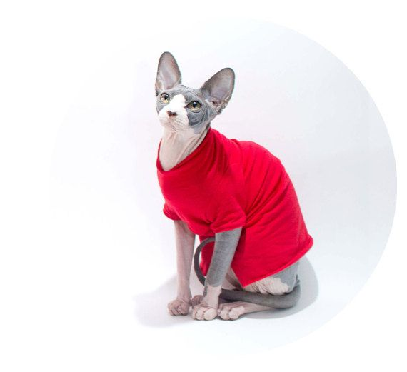 Cat Clothes charming TShirt in red sphynx cat clothes Cat