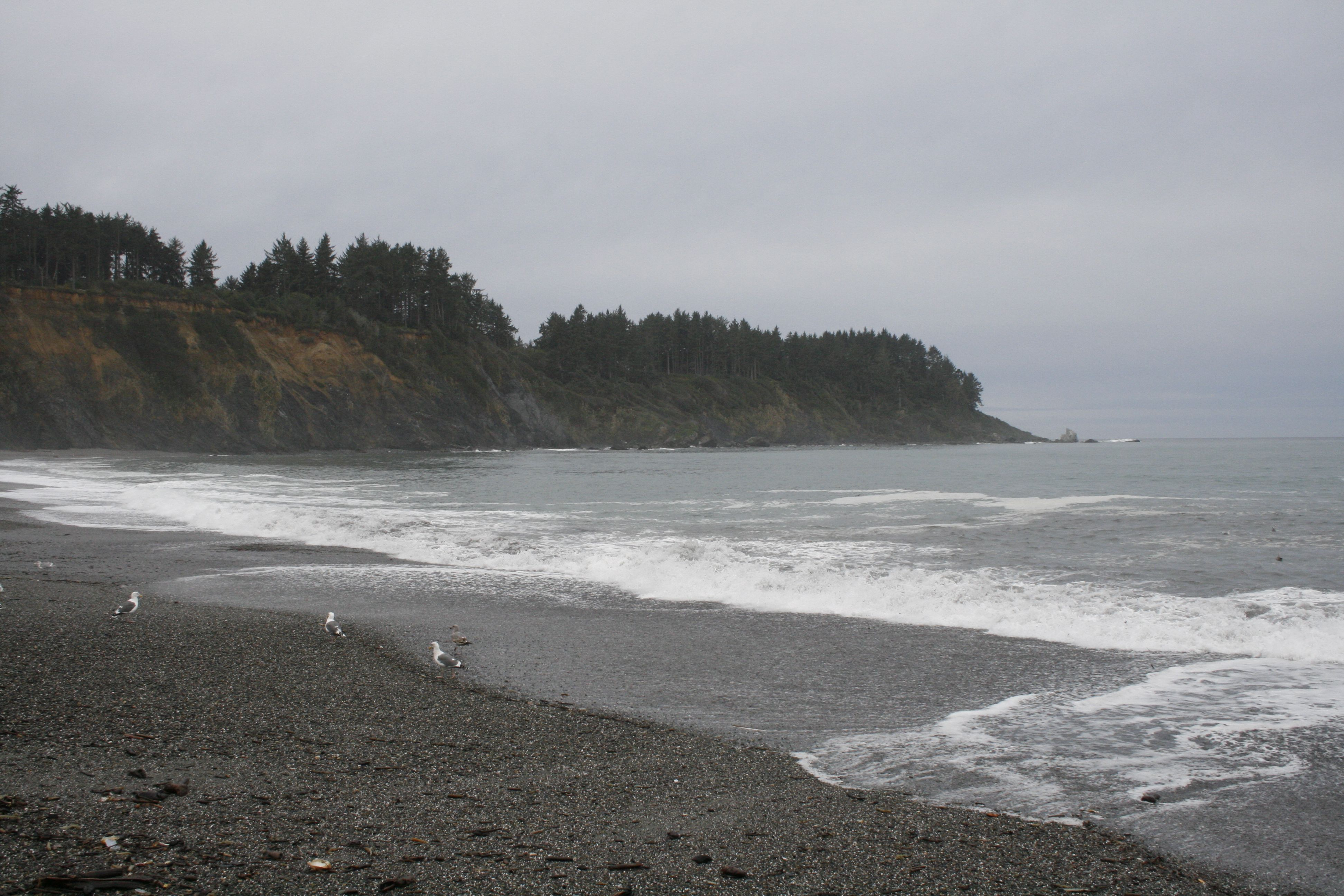 Agate Beach At Patrick S Point State Park