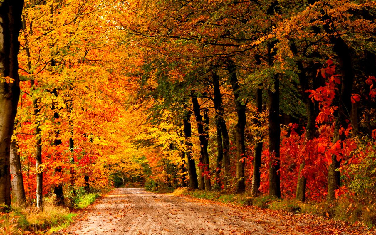 Autumn Country Country Fall Backgrounds Hd Country farm