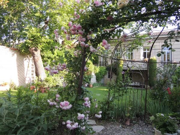 Rosier grimpant sur arche beautifull gardens pinterest rosier gamm vert et id es de jardin - Arche pour rosier grimpant ...
