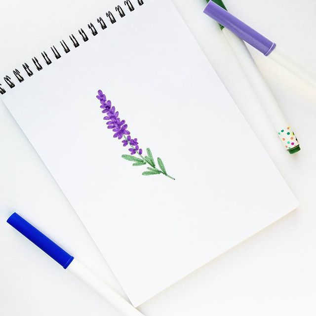 This Is A Very Easy Tutorial On How To Draw Lavender Flowers In Six Steps You Will Be Able To Creat Lavendar Painting Watercolor Paintings Easy Flower Drawing