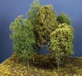 Baumgruppe aus 5 Laubbäumen, 14 - 18 cm