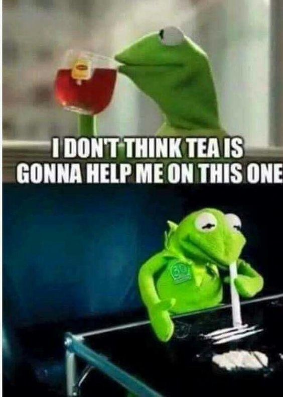 Kermit the frog drugs