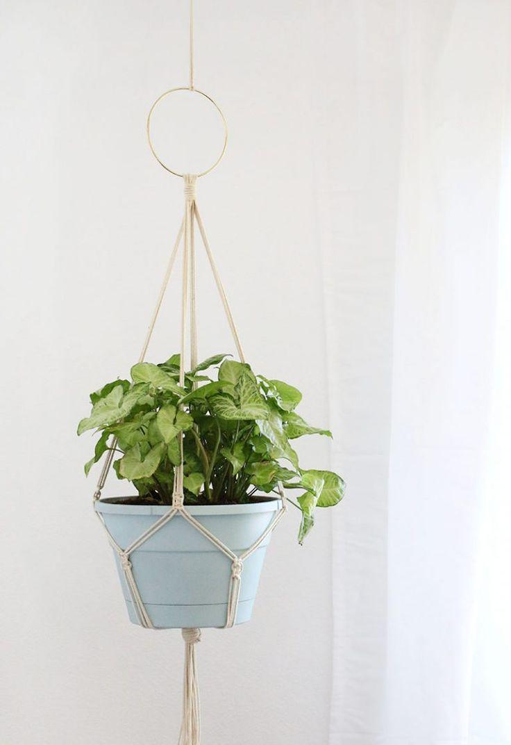 Simple DIY Macrame Plant Hanger #plantingdiysimple