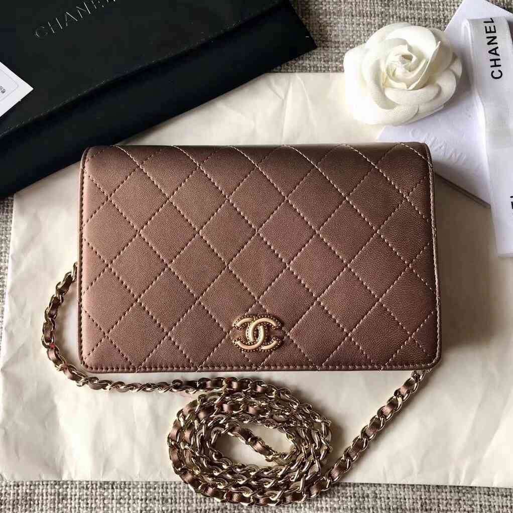 2f25a6b14b920 Chanel Wallet on Chain WOC Bag in Metallic Calfskin with Resin CC 2018 Designer  Bags For