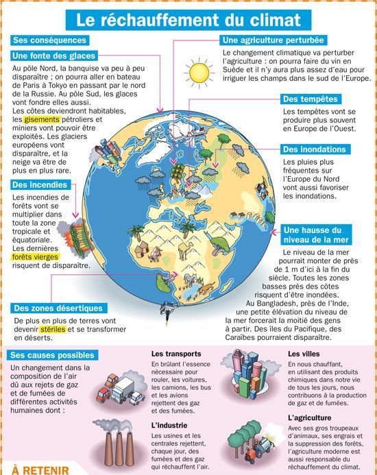 Resultado de imagen de ecologie vocabulaire