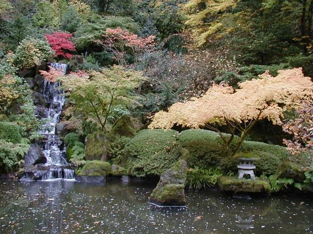 koi pond pictures koi gardens and garden ideas - Japanese Koi Garden