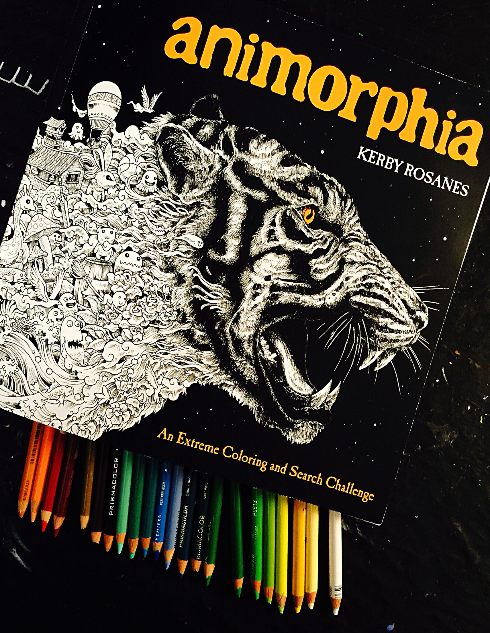 Animorphia an extreme coloring and search challenge by kerby rosanes - Animorphia Color Book My Color Books And Pages Pinterest Colors And Book