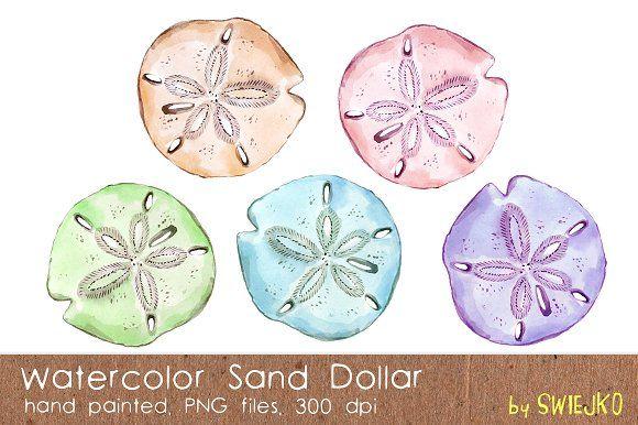 Watercolor Sand Dollar By Swiejko On Creativemarket Sand Dollar Tattoo Clip Art Sand Dollar