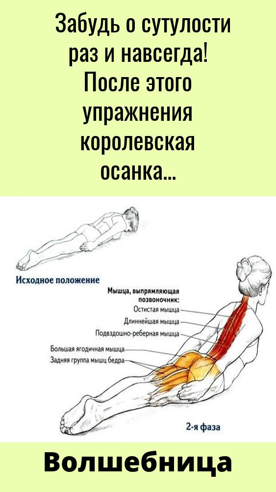 Modnyj Sovetik V 2021 G Uprazhneniya Trenirovochnye Uprazhneniya Dvizheniya Jogi