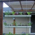 hanging gutter planters. PERFECT!