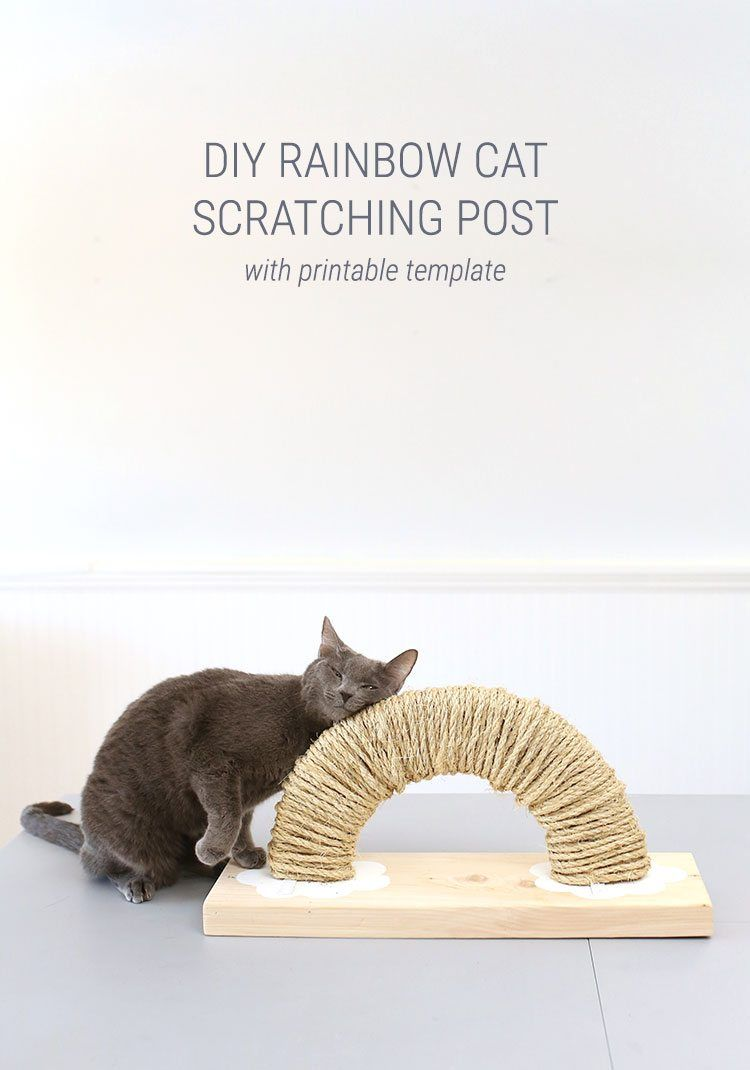 How To Make A Rainbow DIY Cat Scratch Pad