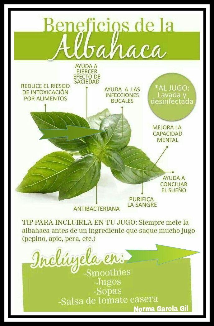 Pin de Norma garcia Gil en BENEFICIOS DE PLANTAS,SEMILLAS