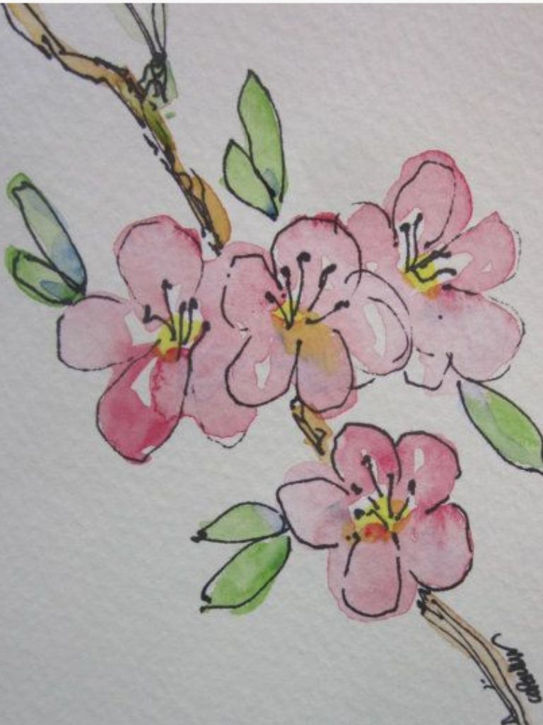 Branch Watercolor Cards Watercolor Paintings Easy Flower Drawing