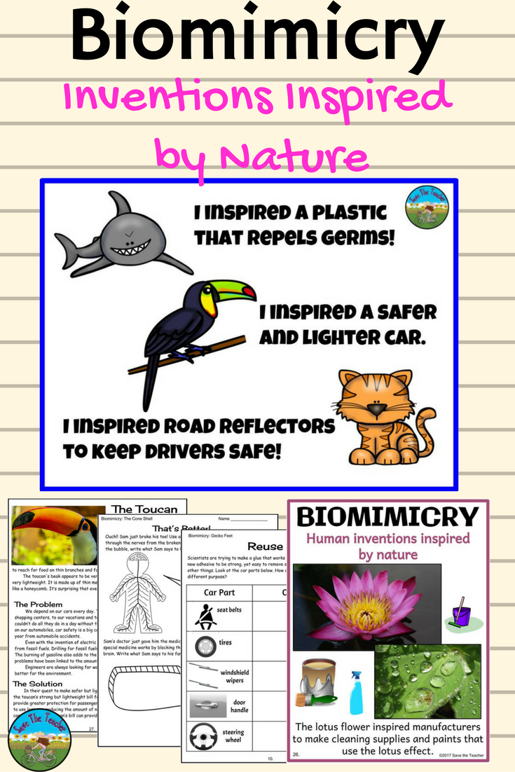 Engage your students with the exciting world of biomimicry!   Kids stem  activities [ 1102 x 735 Pixel ]