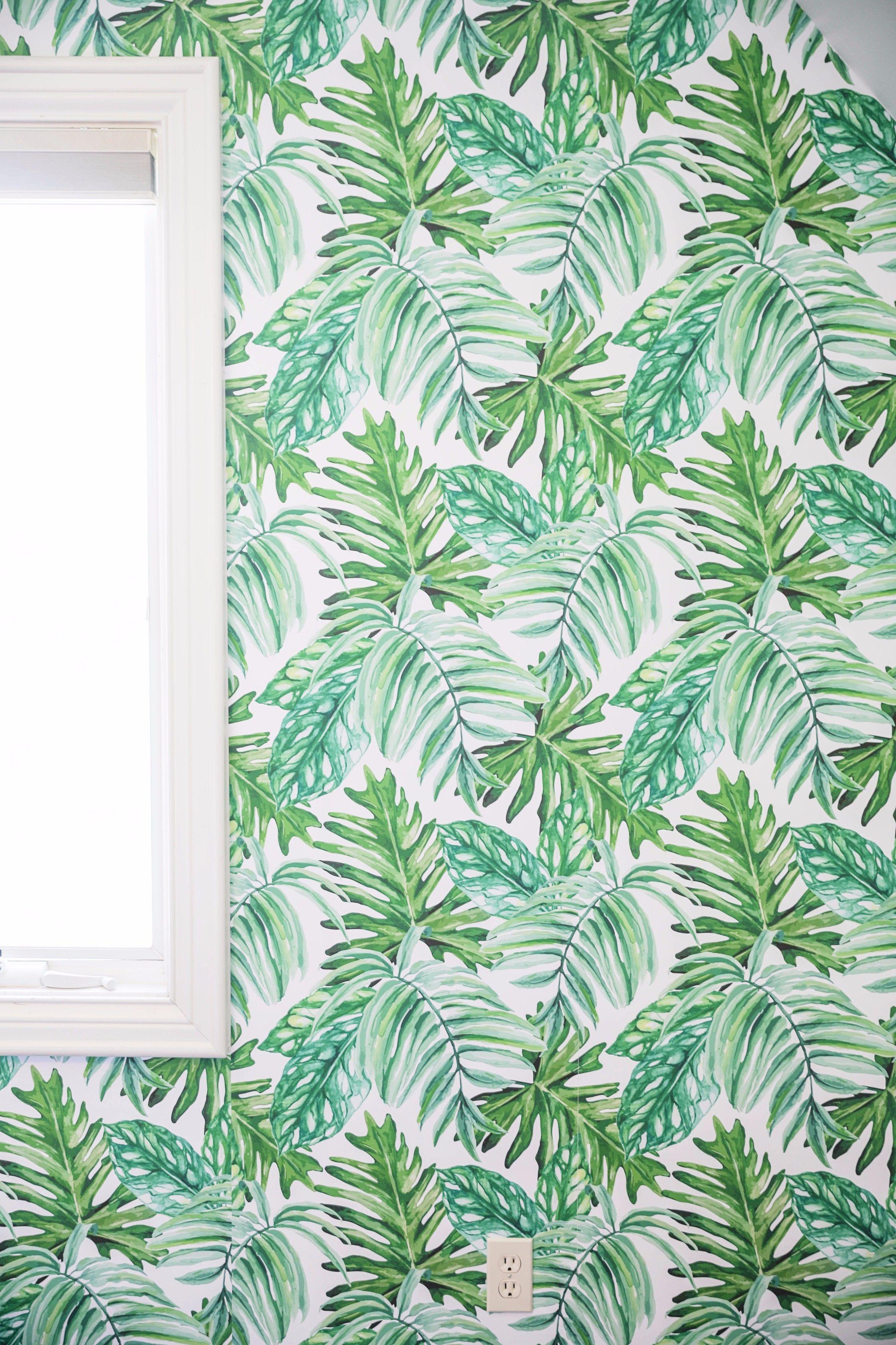 Palm Leaf Temporary Wallpaper | Temporary wallpaper, Palm ...