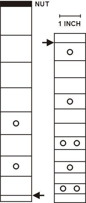 24 5 Fret Scale Cigar Box Guitar Plans Cigar Box Guitar Guitar Fretboard