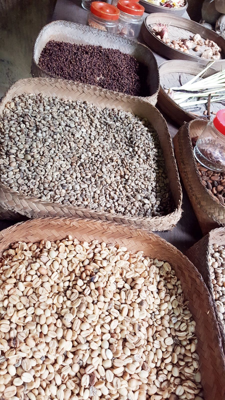 Things to do in Bali Coffee type, Types of coffee beans