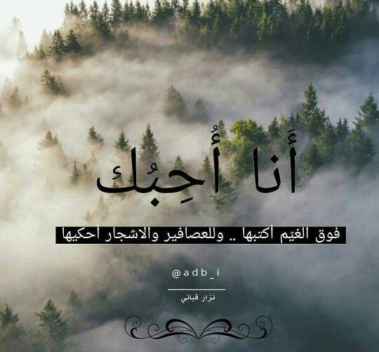 أنا أحبك Love In Arabic Funny Quotes Tu Me Manques