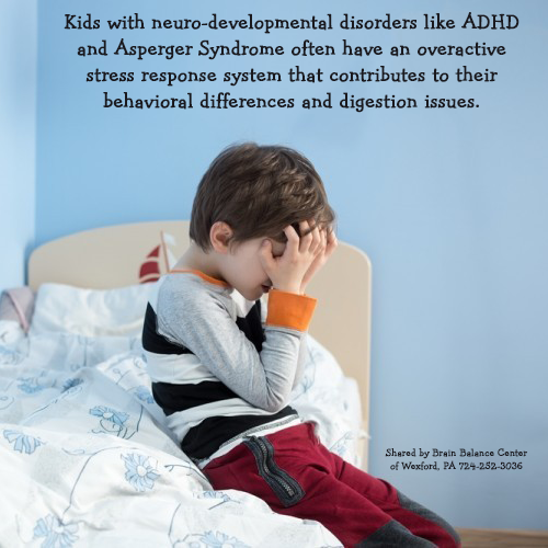 Children with learning and behavioral disorders may have missed significant developmental milestones, which can be a contributing factor in their struggles and and exacerbate an overactive stress response system.  http://www.brainbalancecenters.com/blog/2014/03/brain-function-bodys-stress-response/
