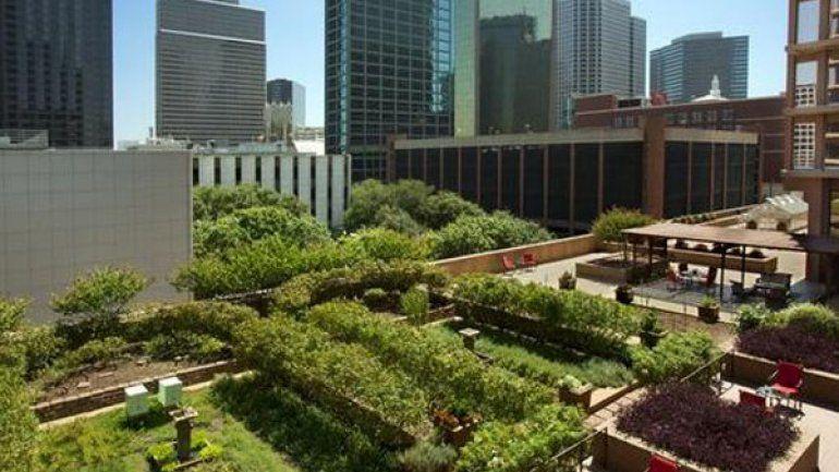 Los Edificios Que Construyan Terrazas Verdes Pagarán Menos