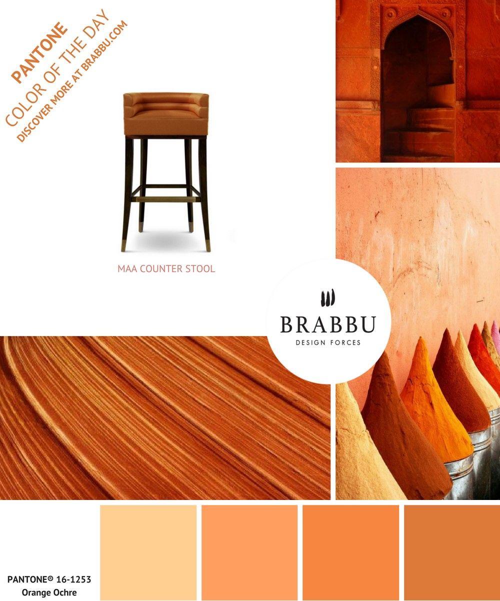 trouvez de l inspiration avec la couleur pantone du jour orange ochre projets de decoration d interieure contemporains pour obtenir les images en haute