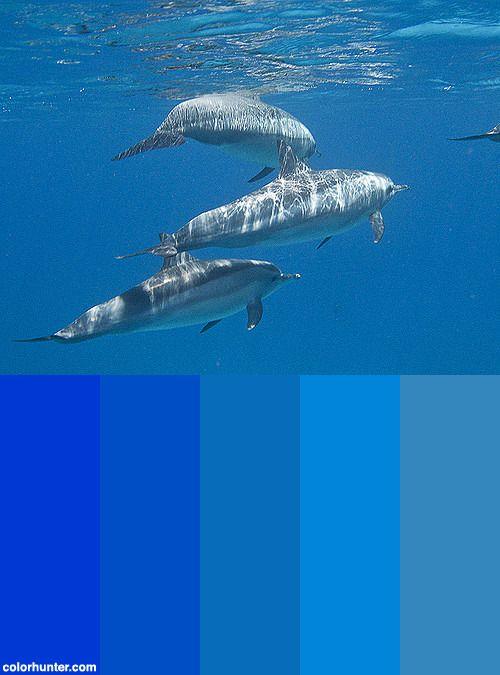 Mer+Rouge+17+Color+Scheme