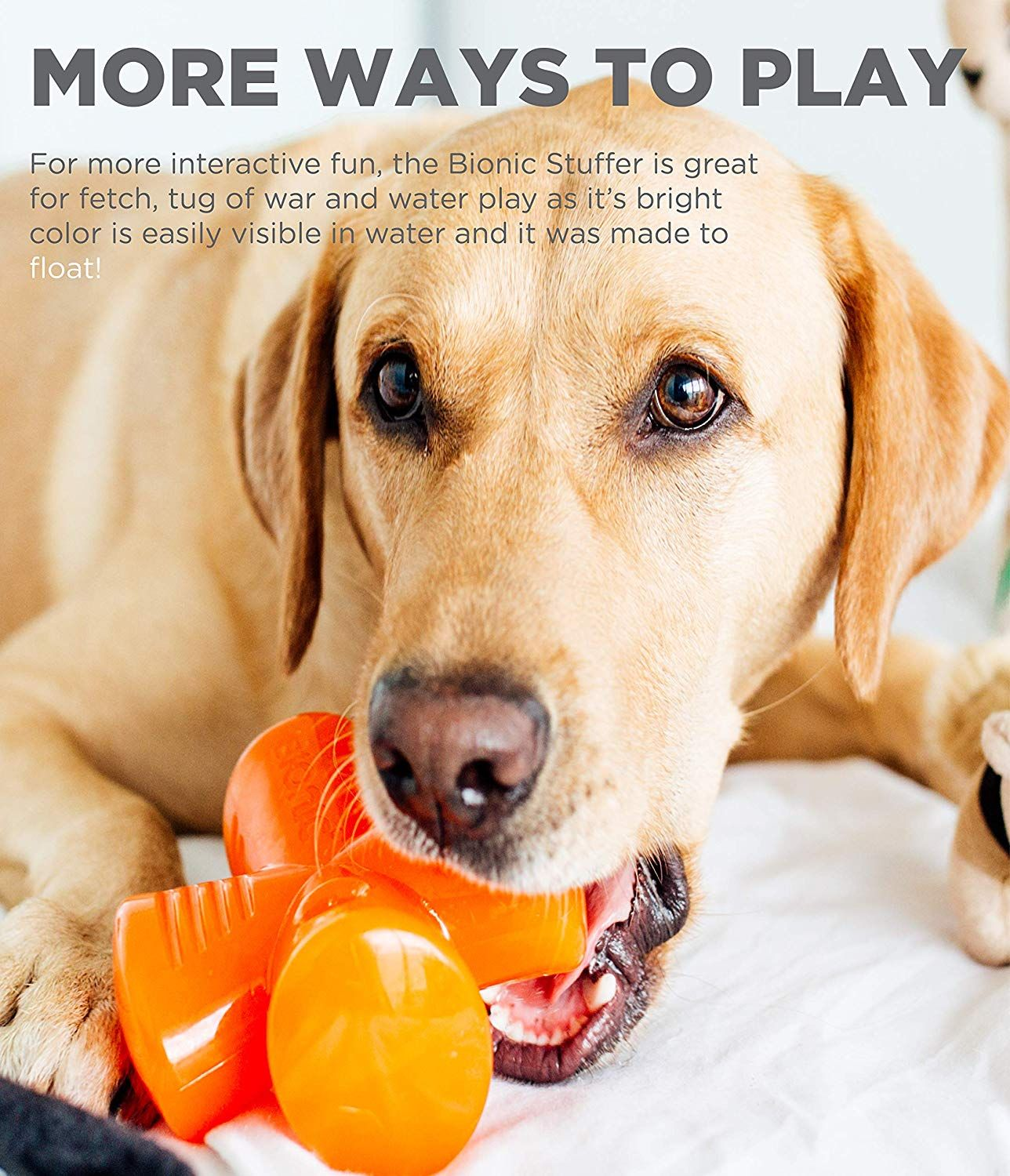 Bionic Stuffer Durable Tough Fetch And Chew Toy For Dogs Click