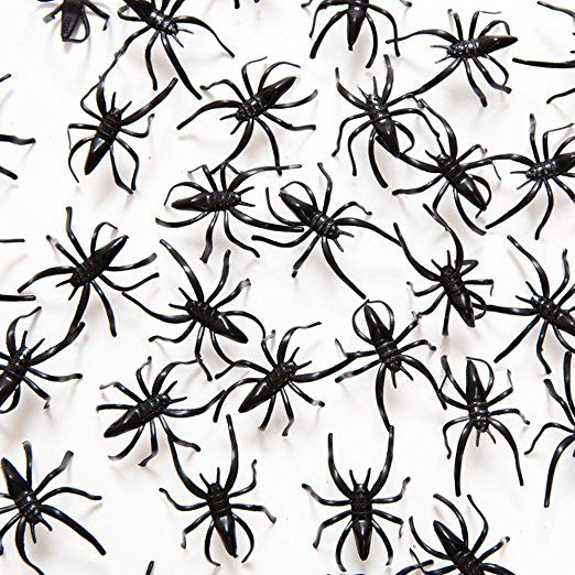 Fun Express Plastic Halloween Spiders Party Favor - 144 Pieces Non - spiders for halloween decorations