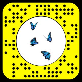 Snap To Unlock Snapchat Snapchat Filter Codes Snapchat Filters Blue Butterfly