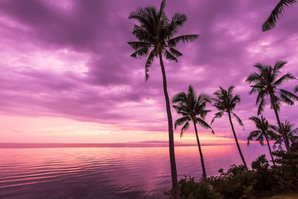 Discover Ideas About Sunset Landscape Tropical Beach
