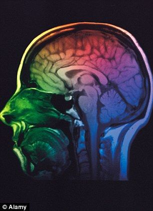 Teens With Autism Brain Injuries And >> Autistic Girls Have More Masculine Brains And Are Affected By