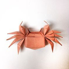 Photo of 26 Great Origami Models for When You're Feeling a Bit Crabby