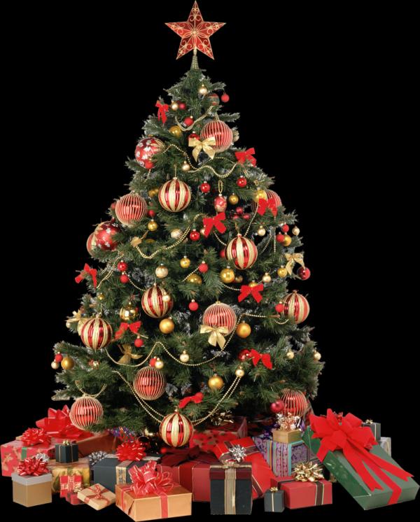 Awesome Transparent Christmas Tree Tumblr 2014-2015 | Fashion ...