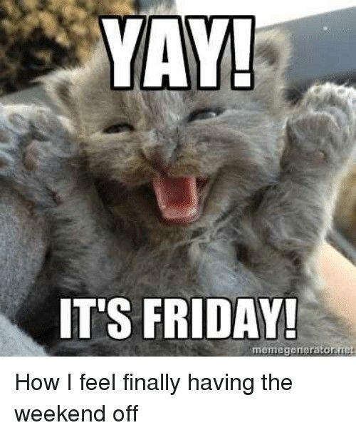 Pin By Kapricious Kitty On Happy Days Every Day Of The Week Life Happy Memes Funny Pictures Friday Meme
