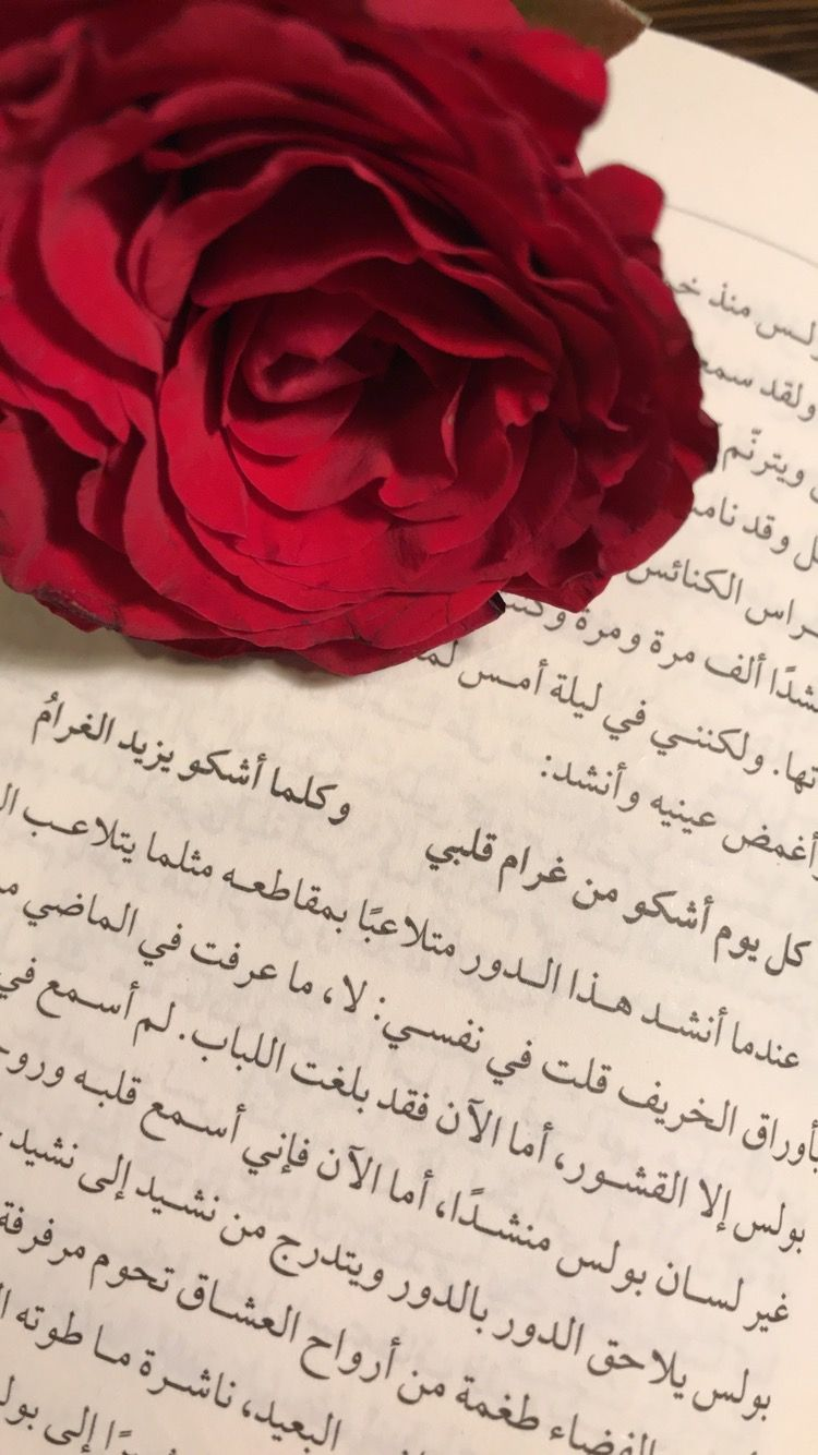 إقتباسات ورد كتاب حب ورد Rose Flowers Plants