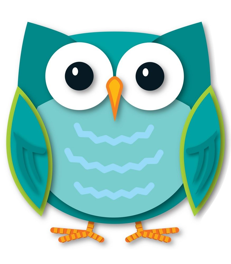 colorful owl two sided decoration learning centers bulletin board rh pinterest ca