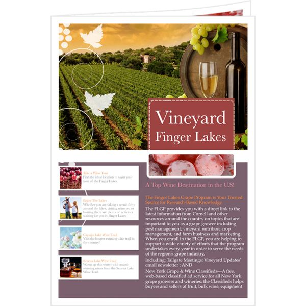 Why not make a professional newsletter for the popular #Vineyard - free newsletter template word