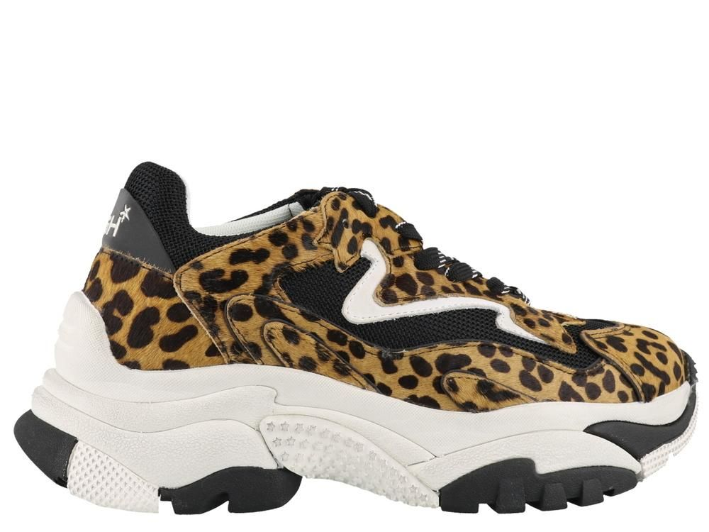 Ash Women's As-addict Ter Leopard Print