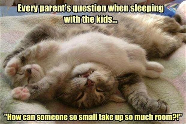 Cute Funny Quote About Kids Why Parents Can Rarely Sleep In