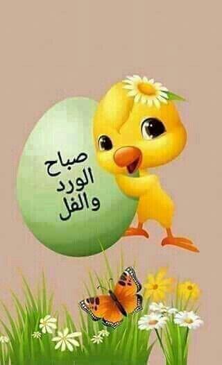 صباح الخير Good Morning Greetings Good Morning Arabic Morning Greeting
