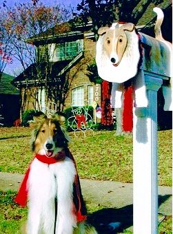 This Collie Mailbox Was Made By The Talented Artist Michel Devost