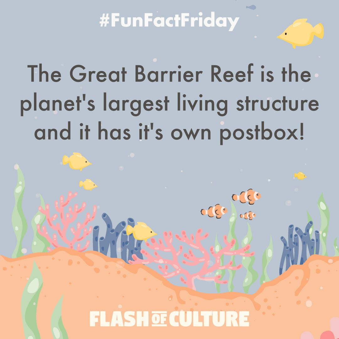 The Great Barrier Reef Is The Planet's Largest Living