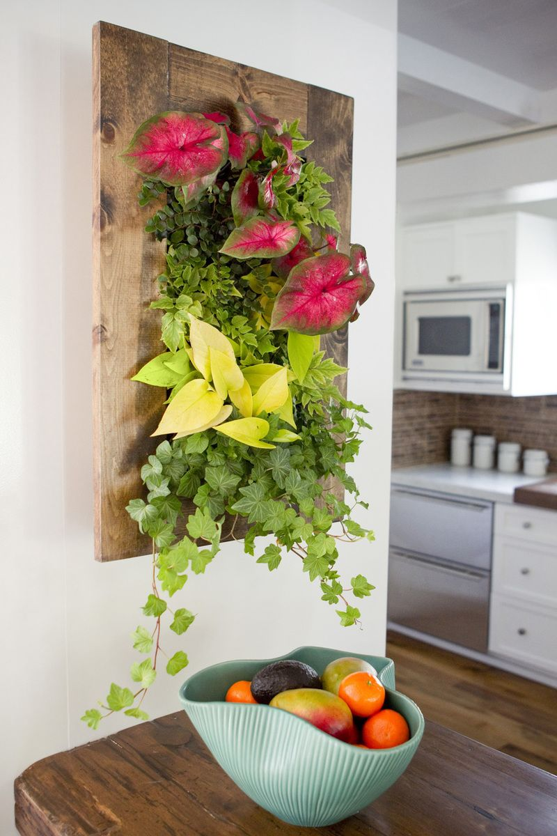 Grovert Walnut Frame Kit Bright Green And Bring Art To Life This Living Wall Planter