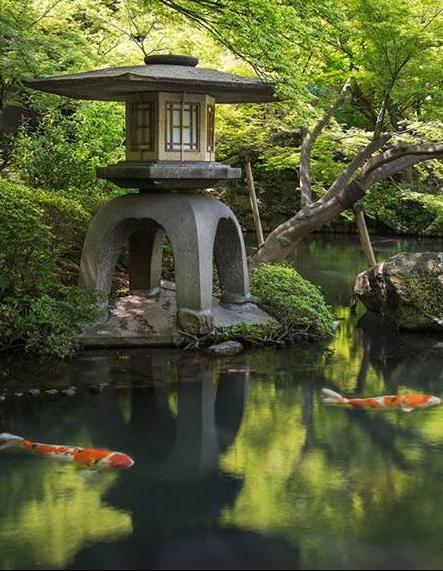 Tokyo Japan From Iryna Jardin Japonais Paysage Zen Jardin Zen