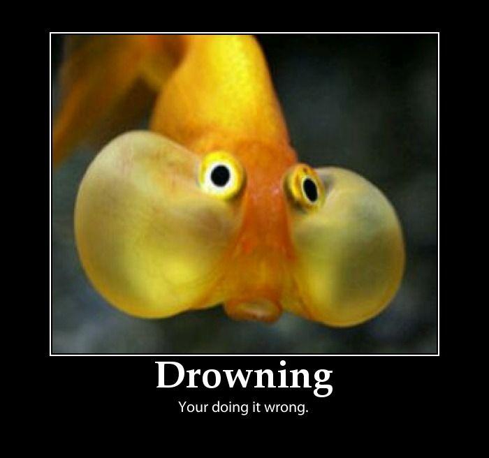 drowning...